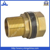 Cor de bronze Niple Hexagonal macho (YD-6019)