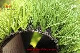 Herbe artificielle de vente du monofilament 50mm de plastique de pelouse chaude d'herbe pour le terrain de football