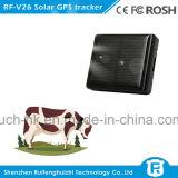 Mini animal familier GPS de traqueur pour des animaux familiers avec IP67 imperméable à l'eau (V26)