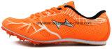 Rennend Volgend Schoeisel, de Schoenen van de Aar van de Tennisschoenen van het Gebied (812)