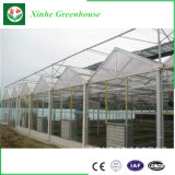 Fabricante de vidro com efeito de estufa, 4mm de gases com efeito de vidro temperado