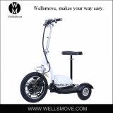 大人の電気スクーターか/Mypet/RoadpetのZappyスクーターを立てなさい