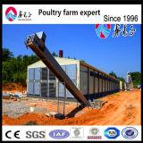 Chambre nécessaire agricole de couche de ferme de poulet d'utilisation