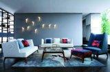 ベストセラーの上の現代ソファーMs1201の居間のソファー