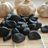 Здоровья закуски питание чеснок черного цвета для продажи