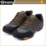 Neue im Freien wandernde Schuhe, die Militäraufladungen ausbilden