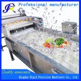 Jujube Washer Fruit Cleaning Machine