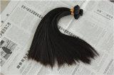 مصنع شعر إمتداد ريمي عذراء [هومن هير] [برزيلين]