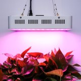 Luz Growing del espectro de la planta llena de Dimmable 600W LED