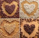 De beste Molens van de Hamer van de Grondstoffen van de Korrel van het Dierlijke Voedsel van de Kwaliteit