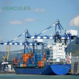 Portail du port de la grue Grue mobile grue de déchargement de navires