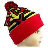 Chapéu feito malha do inverno do chapéu na cor agradável NTD16c