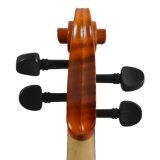 Bon de tilleul corde de violon des instruments de musique