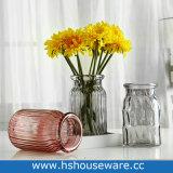꽃꽃이를 위한 장식적인 유리제 가정 장식 화병