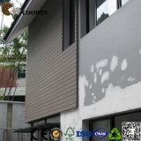 Наружные защитные элементы WPC настенной панели композитные панели снаружи