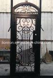 Portas exteriores do ferro feito de porta de única entrada