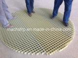 Grata delle grate/FRP GRP della plastica di rinforzo vetroresina, ad alta resistenza