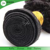 ねじれた巻き毛の拡張自然なブラジルのRemyのバージンの毛