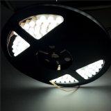 striscia flessibile del TUFFO 12V/24V LED di 24cm/48cm/72cm/98cm/120cm per illuminazione dell'automobile