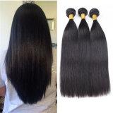 Cabelos lisos Cabelo Virgem brasileira Virgem de extensão de cabelo humano Cabelos Brasileiro