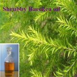 100% de pureza Baeckea Frutescens Oil Aceite Esencial