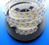 Alto brillo 12V/24V 60LED/Metro 5050 tira flexible de LED