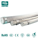 Kabel van de Draad van de Leider van de Kabel van het Aluminium van Voerhead van de hoogspanning de Staal Versterkte