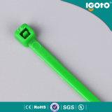 Unterschiedlicher Farben-Kabelbinder SGS-Kabelbinder