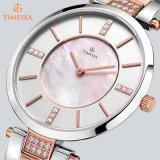 가득 차있는 스테인리스 사파이어 스위스인 시계 여자 격의없는 스타일 시계