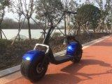 Mag Cool 1000W Motor Fashionable Citycoco Scooter elétrico de 2 rodas