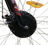 48V 500W 뚱뚱한 타이어 세발자전거, 세발자전거 리튬 건전지 Bafun 전기 LCD 디스플레이