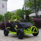 La vendita a buon mercato calda della Cina mini va Kart per i capretti