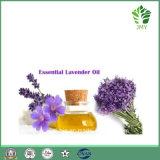 Aceite esencial de lavanda natural de venta caliente