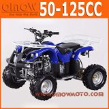 50cc - 110cc Kids Quad 4 Wheeler