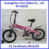 Mini Foldable Ebike con 36V 250W 20 Inch