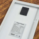 Panneau solaire mono chaud de la vente 10W (SGM-10W)