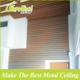 20 ans de garantie de qualité de plafond de cloison pour Hall
