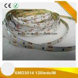 Indicatore luminoso di striscia impermeabile di 12V SMD 3014 LED