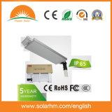 (HM-12100A) de 12V100W LED Paneles de mono en una sola calle la luz solar