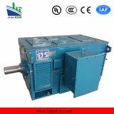 Motor de alta tensão da série de Y, motor de indução de alta tensão Y3555-4-280kw