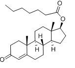 Hoher Reinheitsgrad-aufbauendes Steroid-Testosteron Enanthate rohes Hormon 250mg/Ml