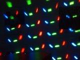 디스코 점화를 위한 최신 판매 LED 나비 Durby 당 크리스마스 불빛