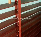 De Banden van de ladder voor de Zonneblinden van het Venster (sgd-c-5113)