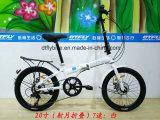 20-дюймовый стальной раме складной велосипед, 7скорость, дисковый тормоз