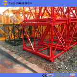 Aufrichtung-Turmkran-Lieferant China-Qtk20 2ton vorbildlicher schneller mit bester Qualität
