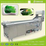 PT-2000 Fruits машина белить пара густолиственного овоща с 500-1500kg/H