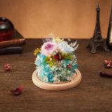 Flor natural del 100% para el regalo de cumpleaños del día de tarjeta del día de San Valentín