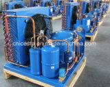 中型および低温のManeuropの密閉圧縮機の凝縮の単位