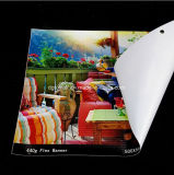 Vinilo de interior al aire libre material de la flexión del PVC de la impresión del cartel de encargo de los media que hace publicidad de la visualización de la bandera