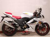 Rzm250f-2b Racing Motorcycle 150cc / 200cc / 250cc